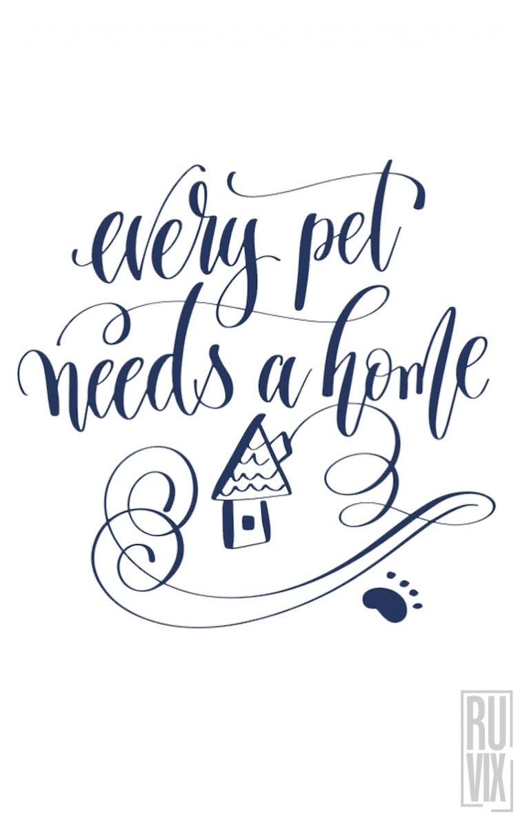 Tricou Every Pet
